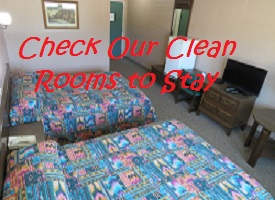 Check Our Clean Rooms to Stay